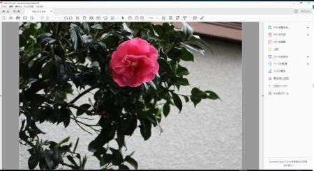 Pdf-image-in-Photoshop7